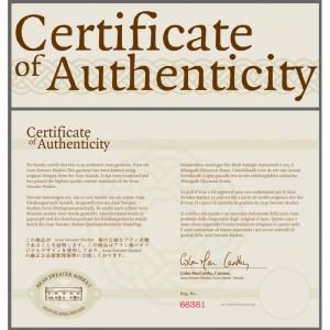 A certificate of authenticity. Blockchain technology makes it possible to record certificates of authenticity, origine, research and stocks. The possibilities are endless. Uitleg blockchain. Een certificaat van echtheid. Blockchain technologie maakt het mogelijk om certificaten zoals certificaten van echtheid, spaar- en aandelencertificaten, certificaten van onvermogen, certificaten van onderzoek, van inschrijving en certificaten van oorsprong vast te leggen. De mogelijkheden zijn legio.