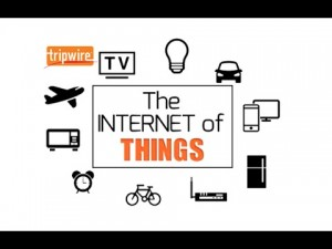 The internet of things and privacy. Het internet der dingen en privacy.