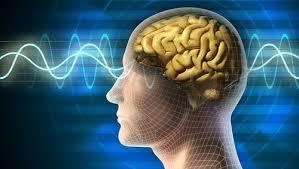 A brain. Consciousness and singularity. Hersenen. Bewustzijn en singulariteit.