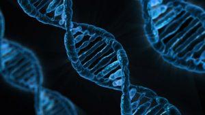 DNA. During the World Economic Forum there is a lot of debate about genetic coding in the near future. DNA. Tijdens het World Economic Forum wordt veel gesproken over de ontwikkelingen op het gebied van genetisch coderen.