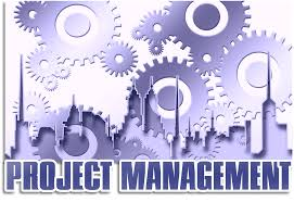 Project management en Initial Coin Offering.