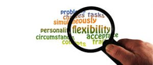 Flexibility, flexibiliteit.