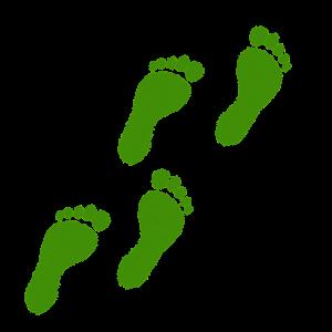 Ecologische voetafdrukken