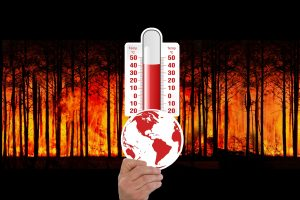 Klimaatverandering, wereldbol, bosbranden